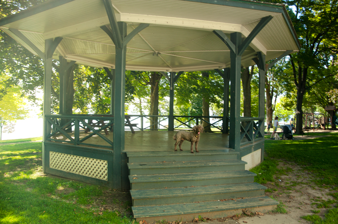 _JAS5729-WEB-Boucle-in-gazebo